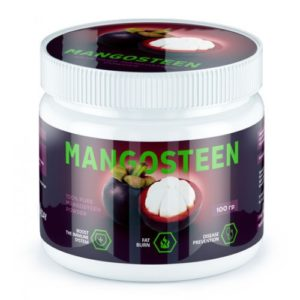 King Protein MANGOSTEEN 100 гр